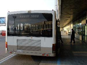 DSCF3104.jpg